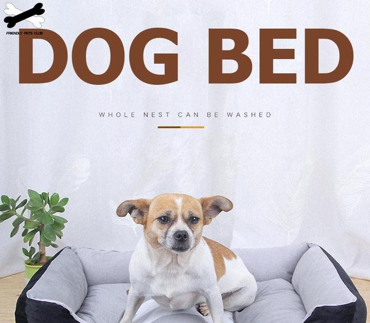 How to choose the Right Afterpay Dog Bed?